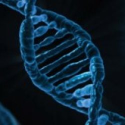 What is Biological Evolution?