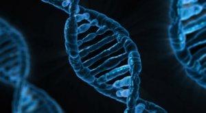 Biological Evolutionary Theory
