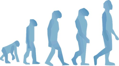 Biological Evolution of Humans